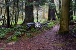 droneTrailSearch